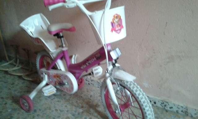 Imagen bicicleta de niña patrulla canina