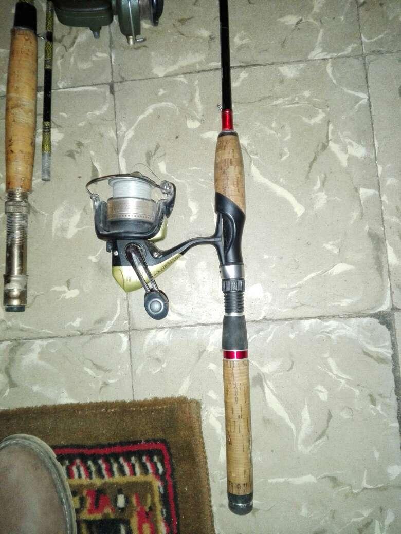 Imagen producto Caña de pescar 2
