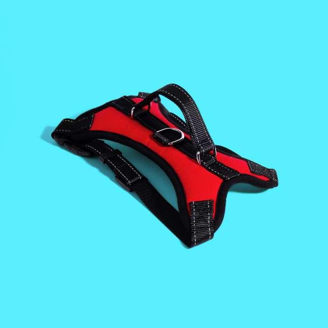 Imagen producto Arnes práctico y cómodo  2