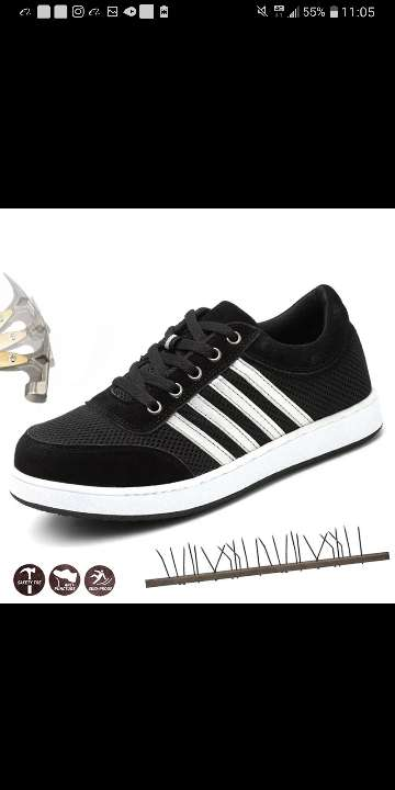 Imagen zapato deportivo