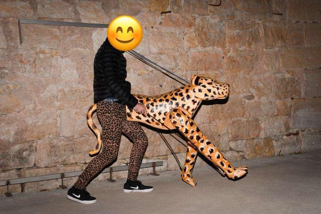 Imagen Disfraz de guepardo