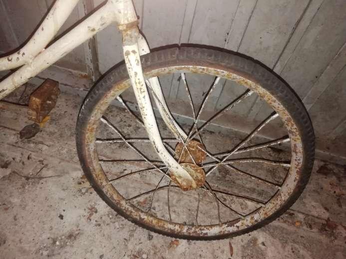 Imagen producto Triciclo tipo bicicleta  3