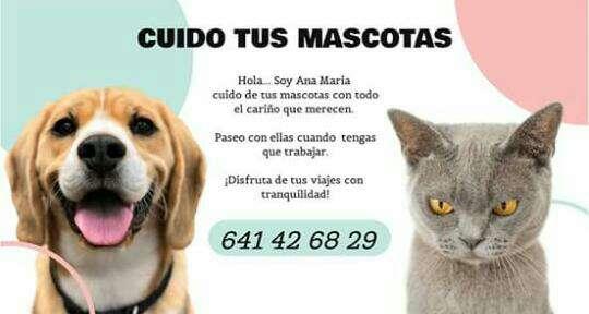 Imagen Servicio como cuidadora de todo tipo de animales 24/7