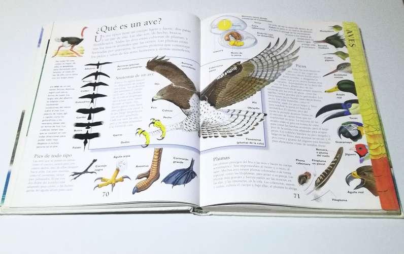 Imagen producto La enciclopedia de los animales. Prof. Philip whit 3