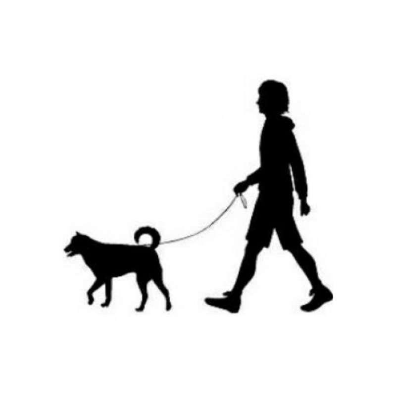 Imagen Cuidamos mascotas de todas las clases en Logroño.