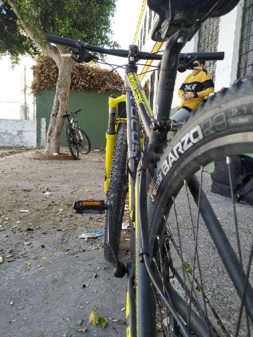 Imagen bicicleta focus