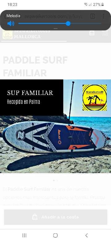 Imagen Ecobono paddlesurf verano 2020