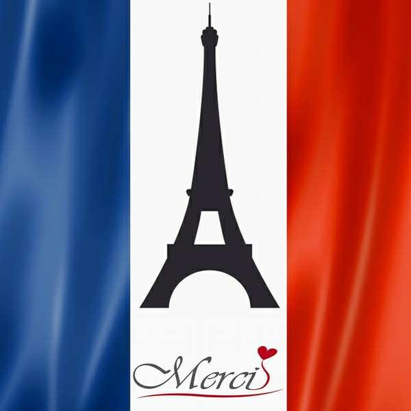 Imagen Profesor de Francés Nativo Online Skype