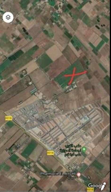Imagen La superficie del terreno es de 9 hectáreas en El Jadida