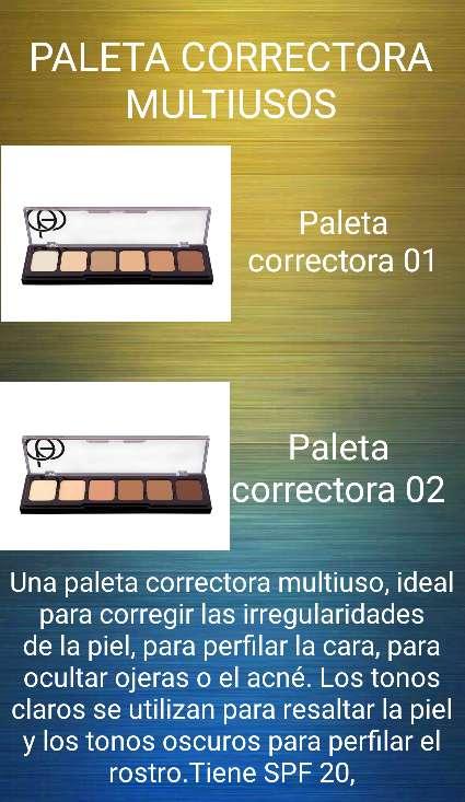 Imagen Paletas correctoras