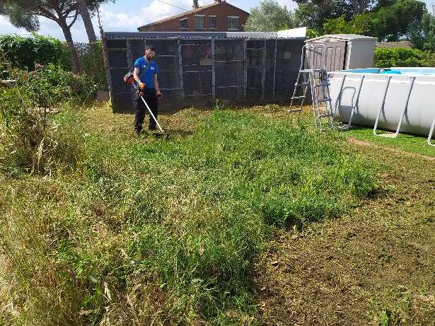 Imagen limpieza de jardines