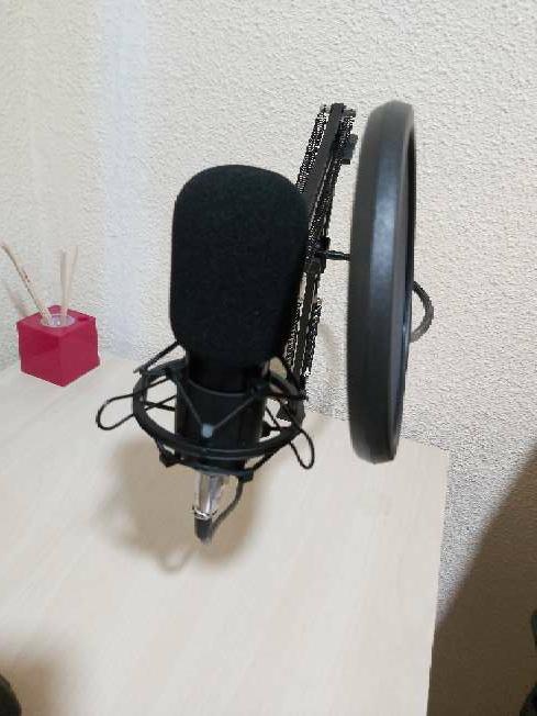 Imagen producto Micrófono Neewer NW-800 Y Power Phantom 48v 6