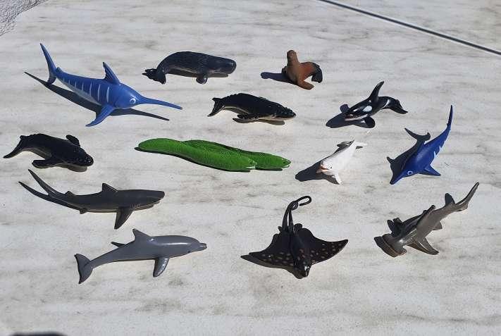 Imagen Animales marinos coleccion de 14