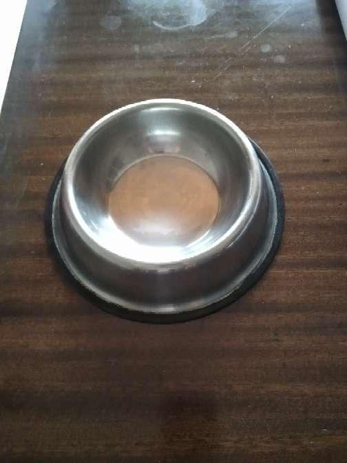 Imagen producto Plat de gos  2