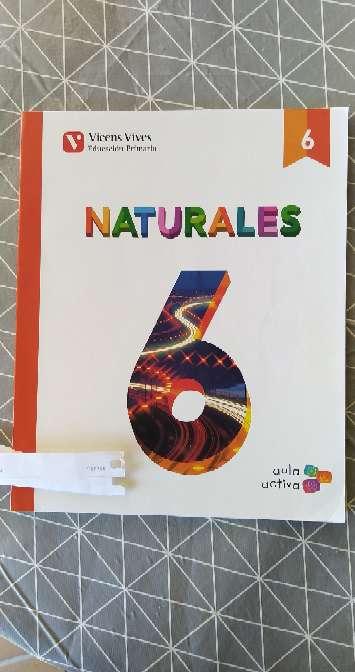 Imagen producto Libros 6° Primaria  8