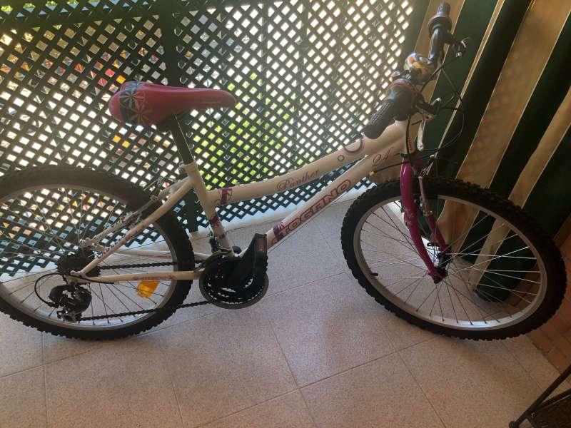 Imagen producto Bicicleta Togano Panther 24