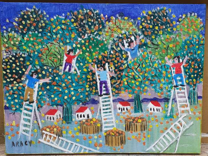 Imagen Aracy artista naif tema colheita de laranja  Medida 30x40 Galeria Ajur sp divulgador da arte naif brasileira
