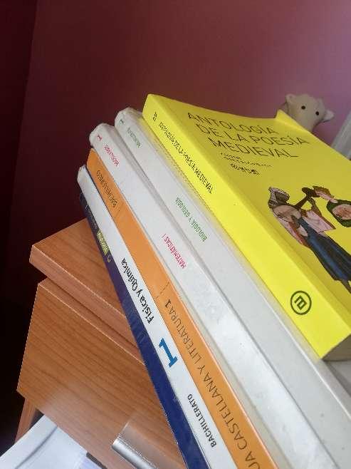 Imagen Libros 1 BACHILLERATO