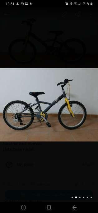 Imagen Bicicleta de 20 pulgadas