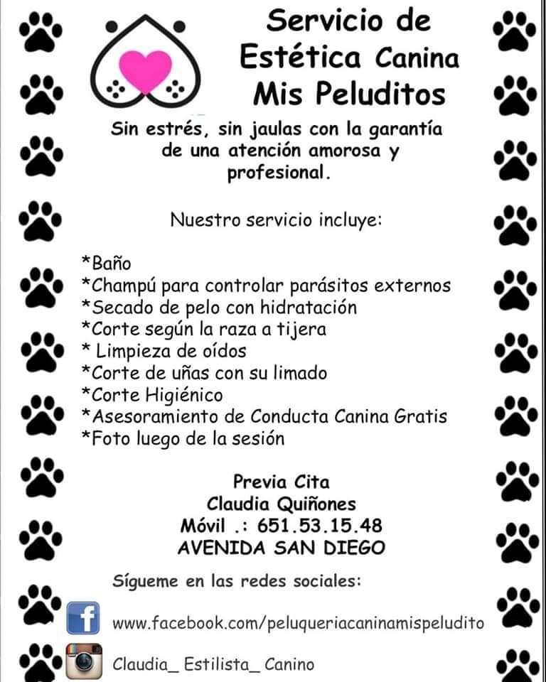 Imagen producto Peluquería Canina 5