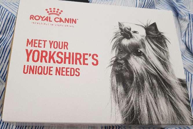 Imagen kit Royal Canin para yorkshire