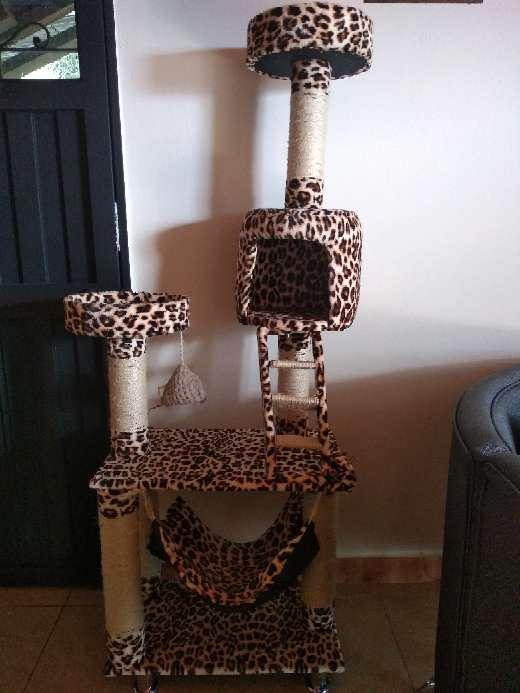 Imagen producto Gimnasio para Gatos 2