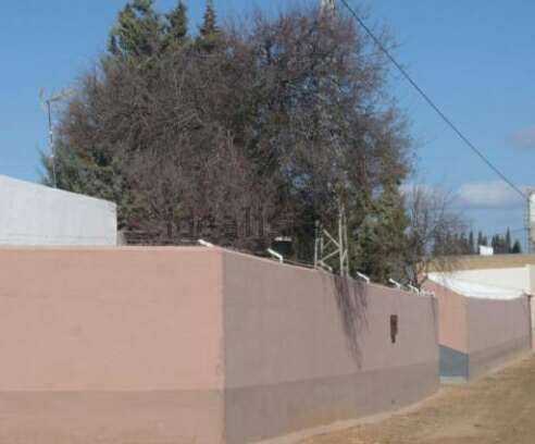 Imagen producto Finca Rustica Con Chalet - Campillos - Malaga - 1300 m2 1