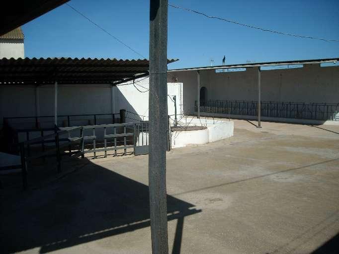 Imagen producto Finca Rustica Con Chalet - Campillos - Malaga - 1300 m2 10