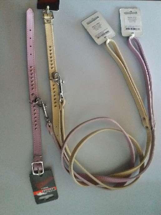 Imagen producto Collar con Correa  1