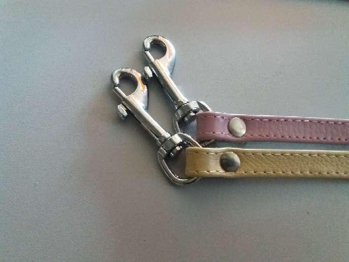 Imagen producto Collar con Correa  6
