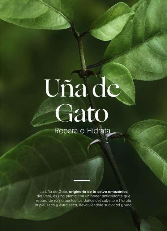 Imagen SET UÑA DE GATO De Yanbal