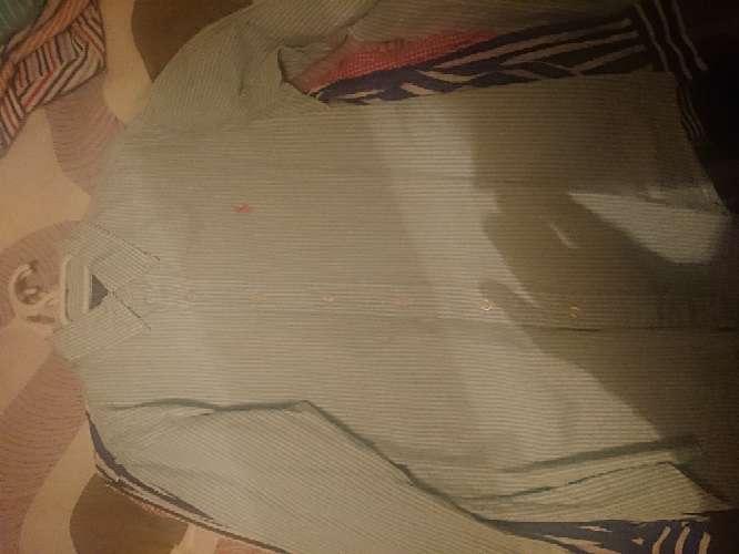 Imagen producto Polos y camisas de marca 6