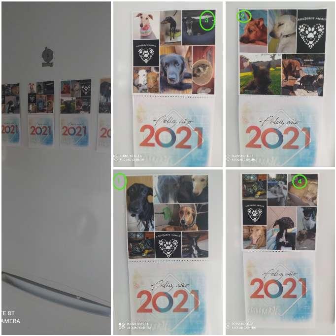 Imagen Calendarios de nevera