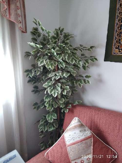 Imagen Planta árbol artificial