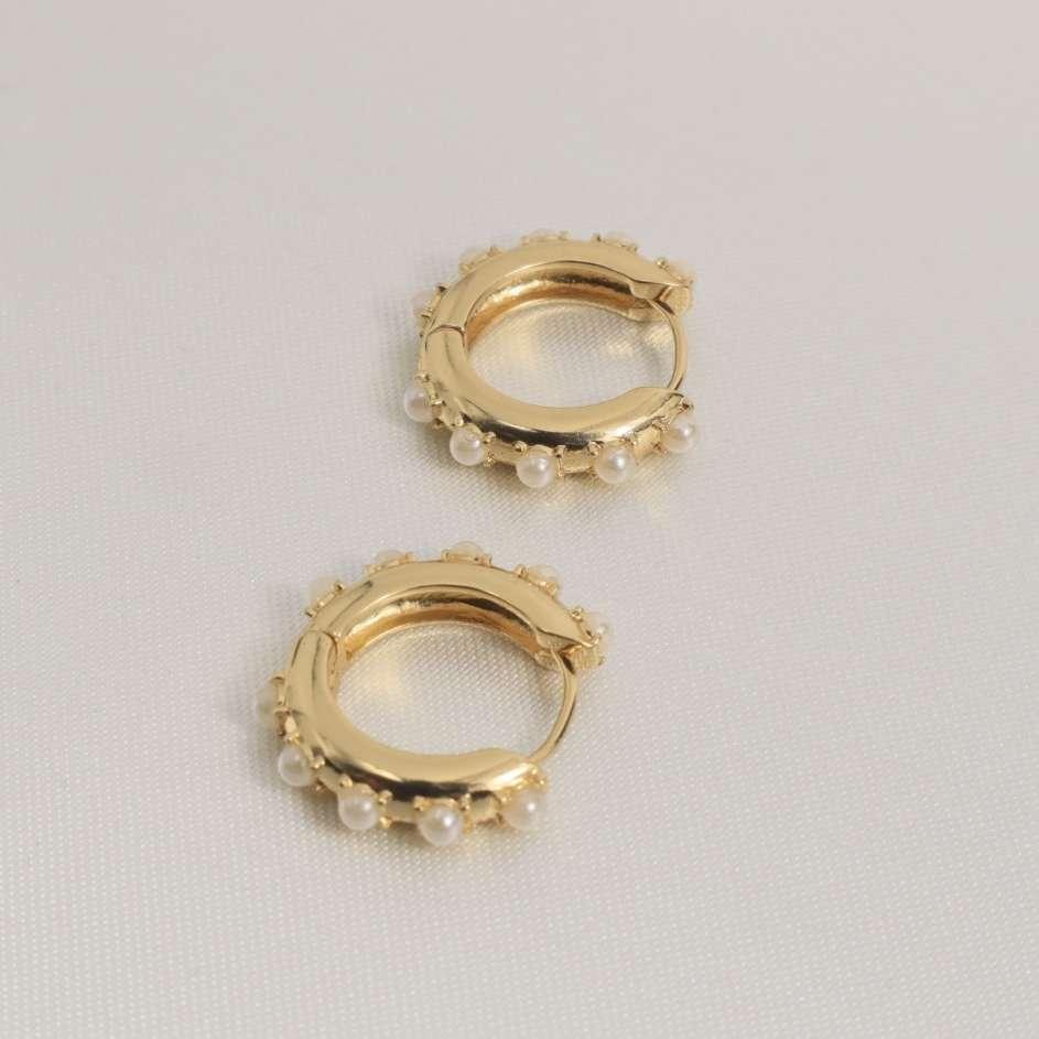 Imagen beautiful earrings