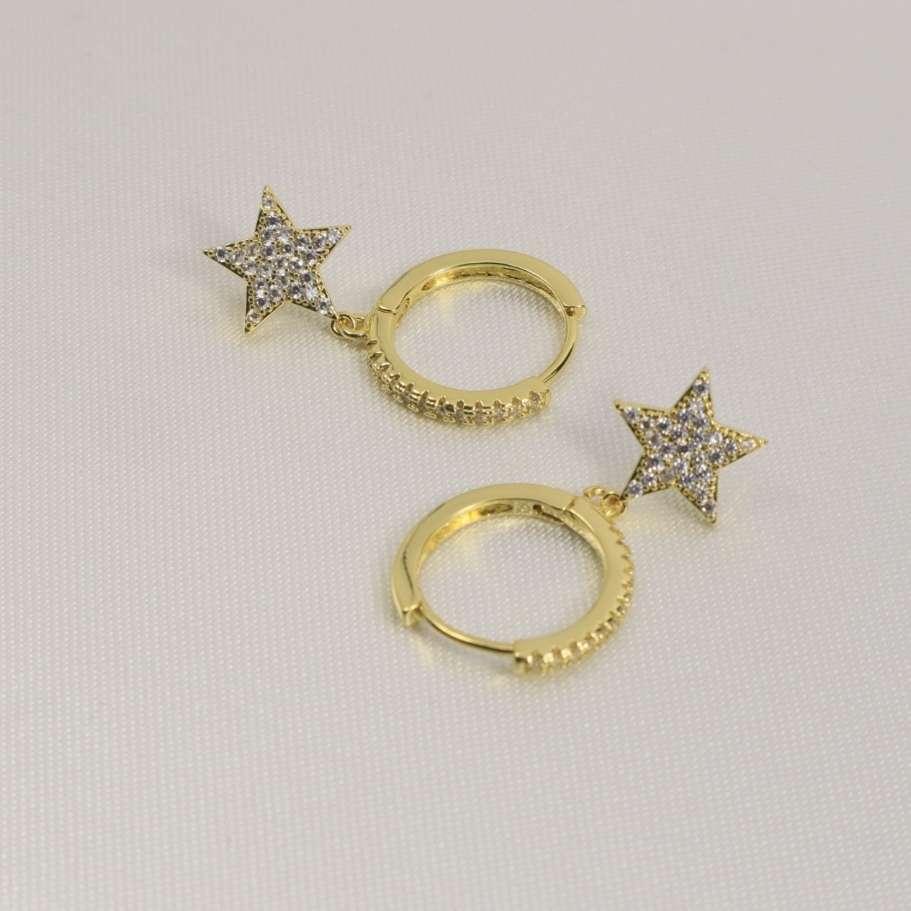 Imagen steel earrings with zircon