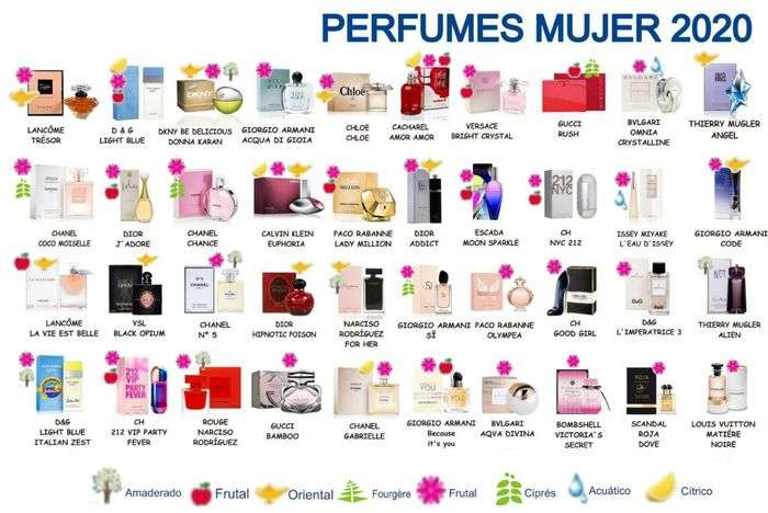 Imagen Perfumes marca blanca