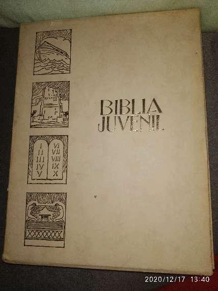 Imagen Biblia Juvenil