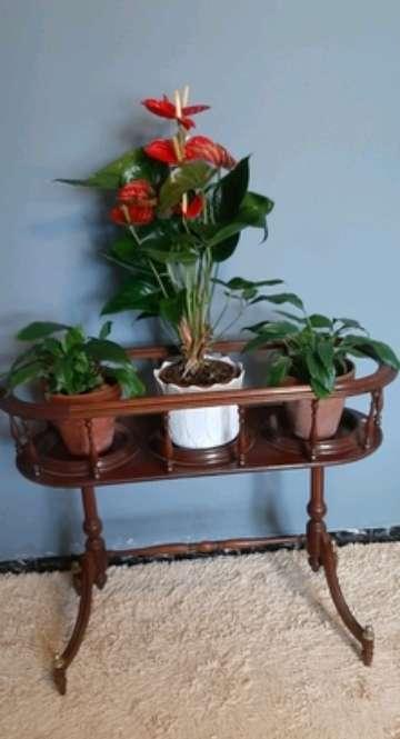 Imagen Macetero triple de madera clásico nuevo