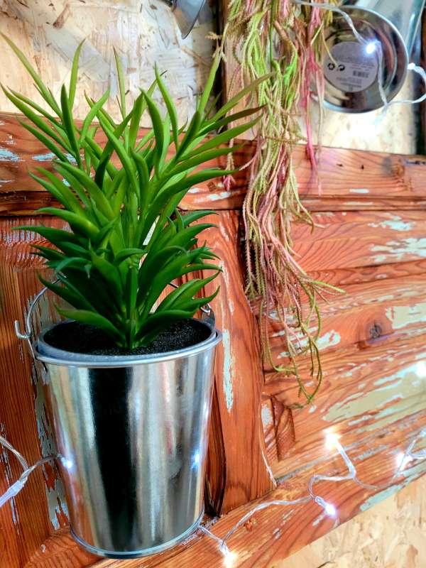 Imagen producto Ventana antigua restaurada.Decoracion plantas y regadoras 3