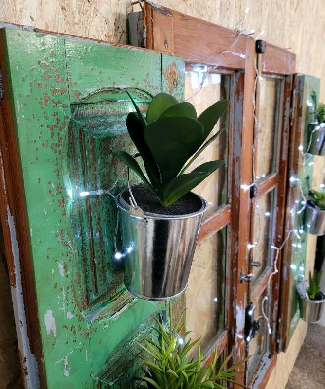 Imagen producto Ventana vintage restaurada decorada con plantas y luz 2