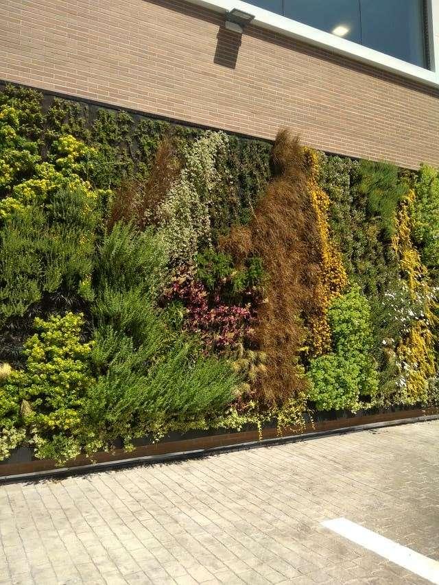 Imagen Jardines verticales y cubiertas verdes.