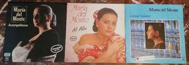 Imagen Discos vinilos Maria del monte