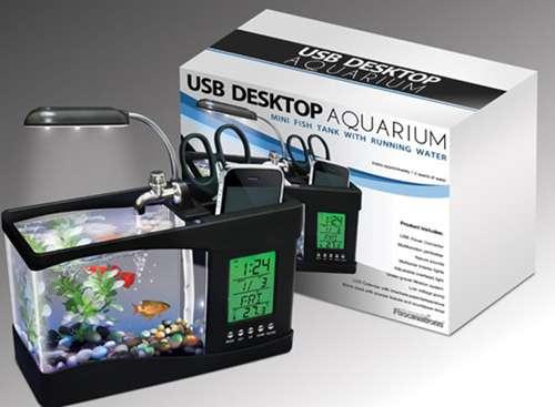 Imagen producto Acuario de sobremesa mini usb y bomba de agua 2