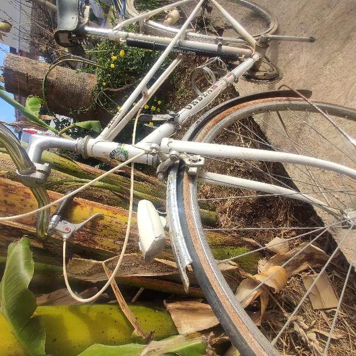 Imagen producto Bicicleta clasica año 80 2