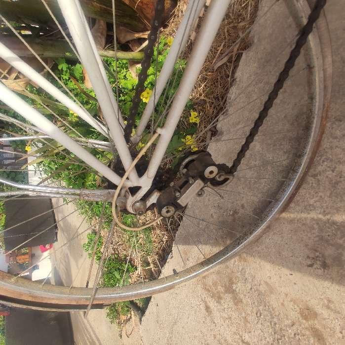 Imagen producto Bicicleta clasica año 80 4