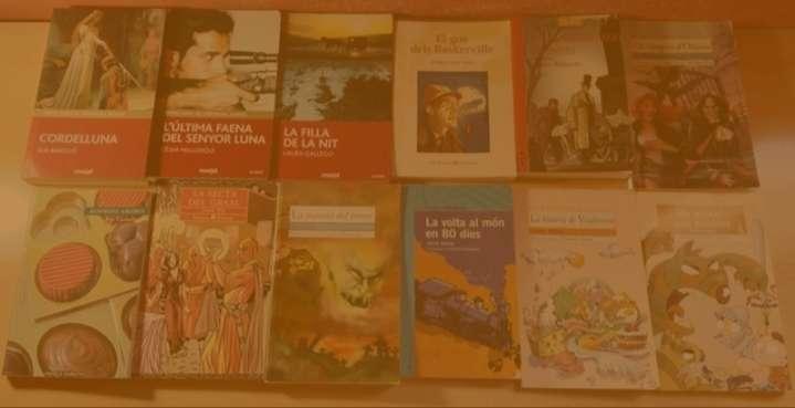 Imagen Pack con 12 libros infantiles y juveniles en catalán/valenciano