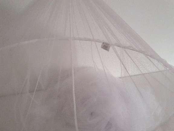 Imagen mosquitera blanca
