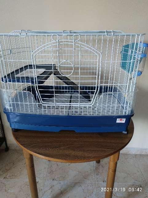 Imagen jaula roedores