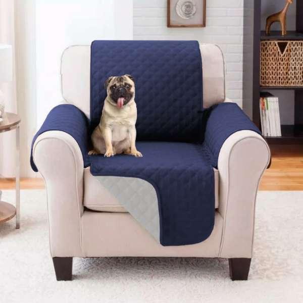 Imagen protector sofá